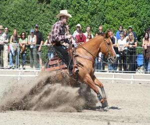 Reining - Western riding - Ride Cowboy puzzle
