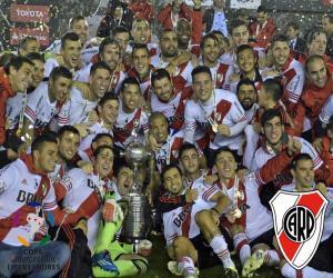 River Plate, Copa Libertadores 2015 puzzle