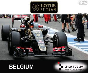 Romain Grosjean, 2015 Belgian Grand Prix puzzle