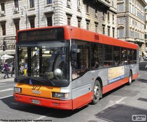 Rome urban bus puzzle
