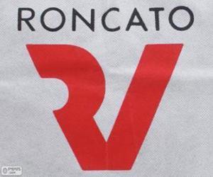 Roncato logo puzzle