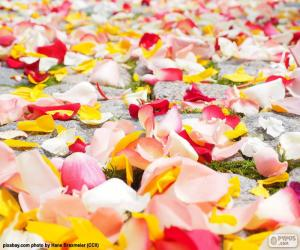 Rose petals wedding puzzle