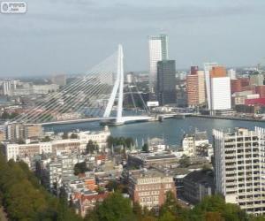 Rotterdam, Netherlands puzzle