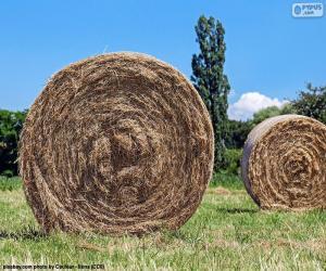 Round straw bales puzzle