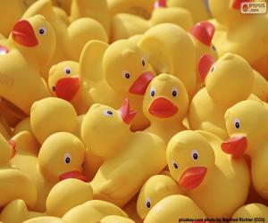 Rubber ducks puzzle