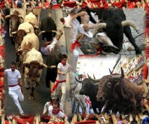 Running of the bulls or encierro, Sanfermines. Pamplona, ​​Navarra, Spain. San Fermin festival from 6 to July 14 puzzle
