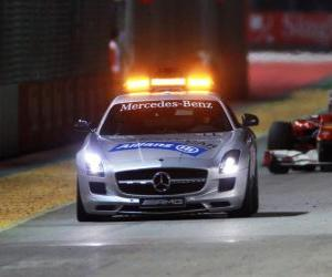 Safety car - Singapore 2010 puzzle