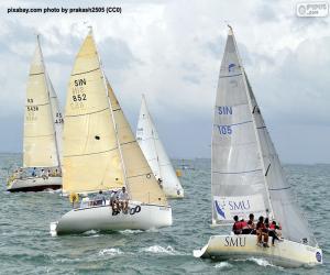 Sailboat Regatta puzzle