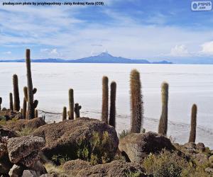 Salar de Uyuni, Bolivia puzzle