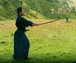 Samurai training puzzle