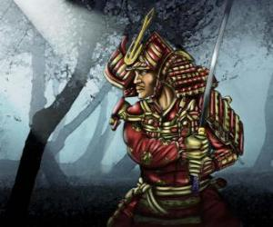 Samurai with traditional dress puzzle