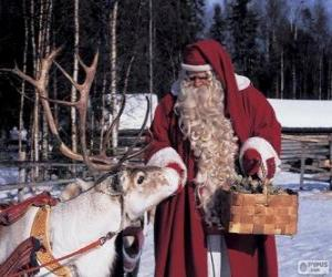 Santa Claus giving feed the reindeer puzzle