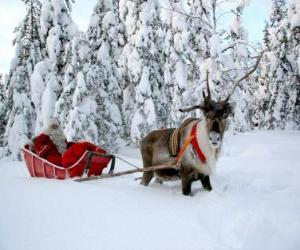 Santa Claus in his sleigh with a reindeer on snow puzzle
