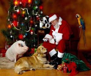 Santa feeding some animals puzzle
