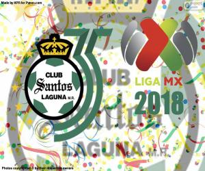 Santos, the 2018 Clausura puzzle