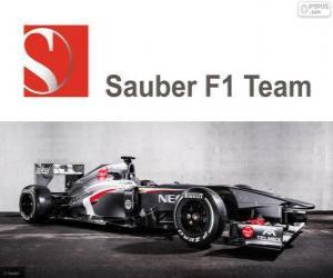 Sauber C32 - 2013 - puzzle