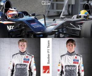 Sauber F1 Team 2013 puzzle