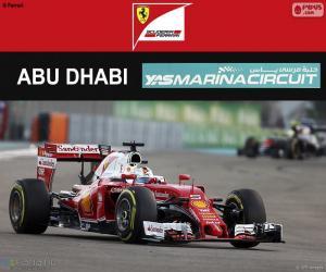 Sebastian Vettel, 2016 Abu Dhabi GP puzzle