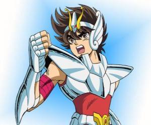 Seiya from Pegasus constellation puzzle