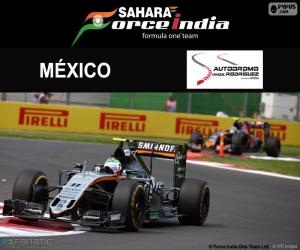 Sergio Perez, 2016 Mexican Grand Prix puzzle