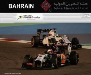 Sergio Perez - Force India - 2014 Bahrain Grand Prix, 3rd classified puzzle