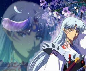 Sesshomaru, Inuyasha's brother. A total unscrupulous demon who hates his brother, the humans and the weak puzzle