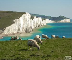 Seven Sisters, England puzzle