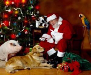 Several animals with Santa puzzle