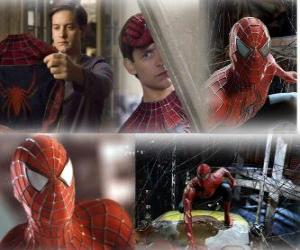 Several images of Spiderman puzzle