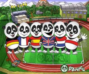 Several Panfu panda T-shirts of some national teams puzzle