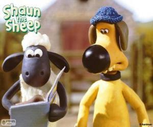 Shaun and Bitzer puzzle