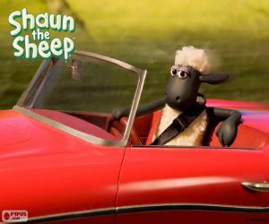Shaun driving a car puzzle