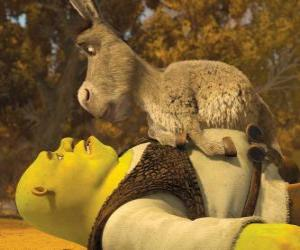 Shrek and Donkey, staring at puzzle