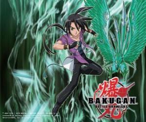 Shun and his Bakugan Ventus puzzle
