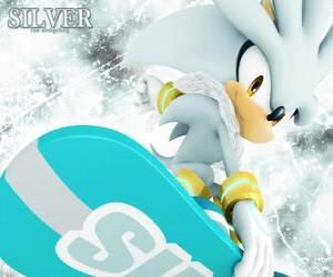 Silver the Hedgehog, the hedgehog that comes from the future puzzle