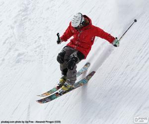 Skier descending puzzle