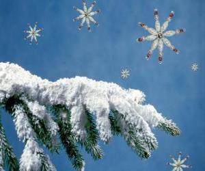 snow-covered fir branch puzzle