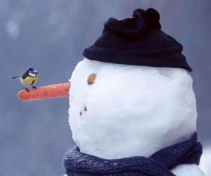 Snowman with a bird on his nose puzzle