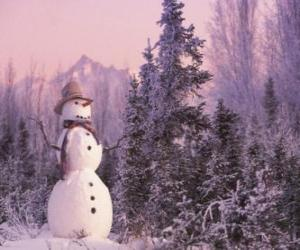 Snowman with a snow scene puzzle