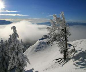 Snowy mountains in Poiana Brasov, Romania puzzle