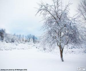 Snowy tree puzzle