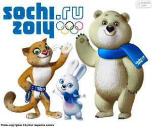 Sochi 2014 Winter Olympics puzzle