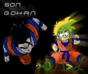 Son Gohan, Goku's eldest son, warrior, half human and half Saiyan. puzzle