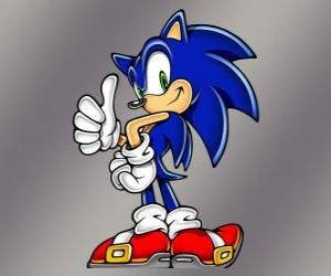 Sonic the Hedgehog, the main protagonist of the Sonic videogames from Sega puzzle