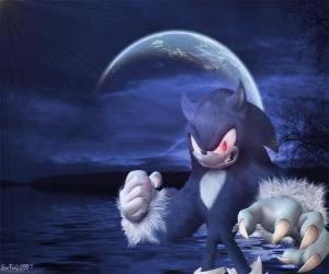 Sonic the Werehog, the latest Sonic transformation, by night it transforms into a wolf hedgehog puzzle