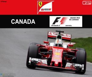 S.Vettel, 2016 Canadian Grand Prix puzzle