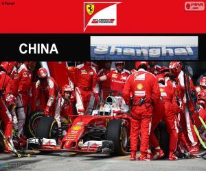 S.Vettel 2016 Chinese Grand Prix puzzle