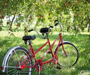 Tandem bicycle or twin. Tandem of two cyclists. Type of special bike with more seats and more pedals puzzle