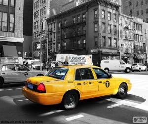 Taxicabs of New York City puzzle