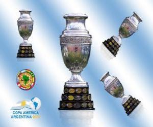 The 2011 Copa América trophy puzzle